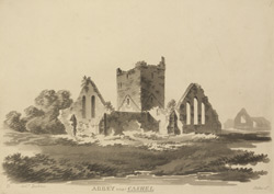 Abbey near Cashel